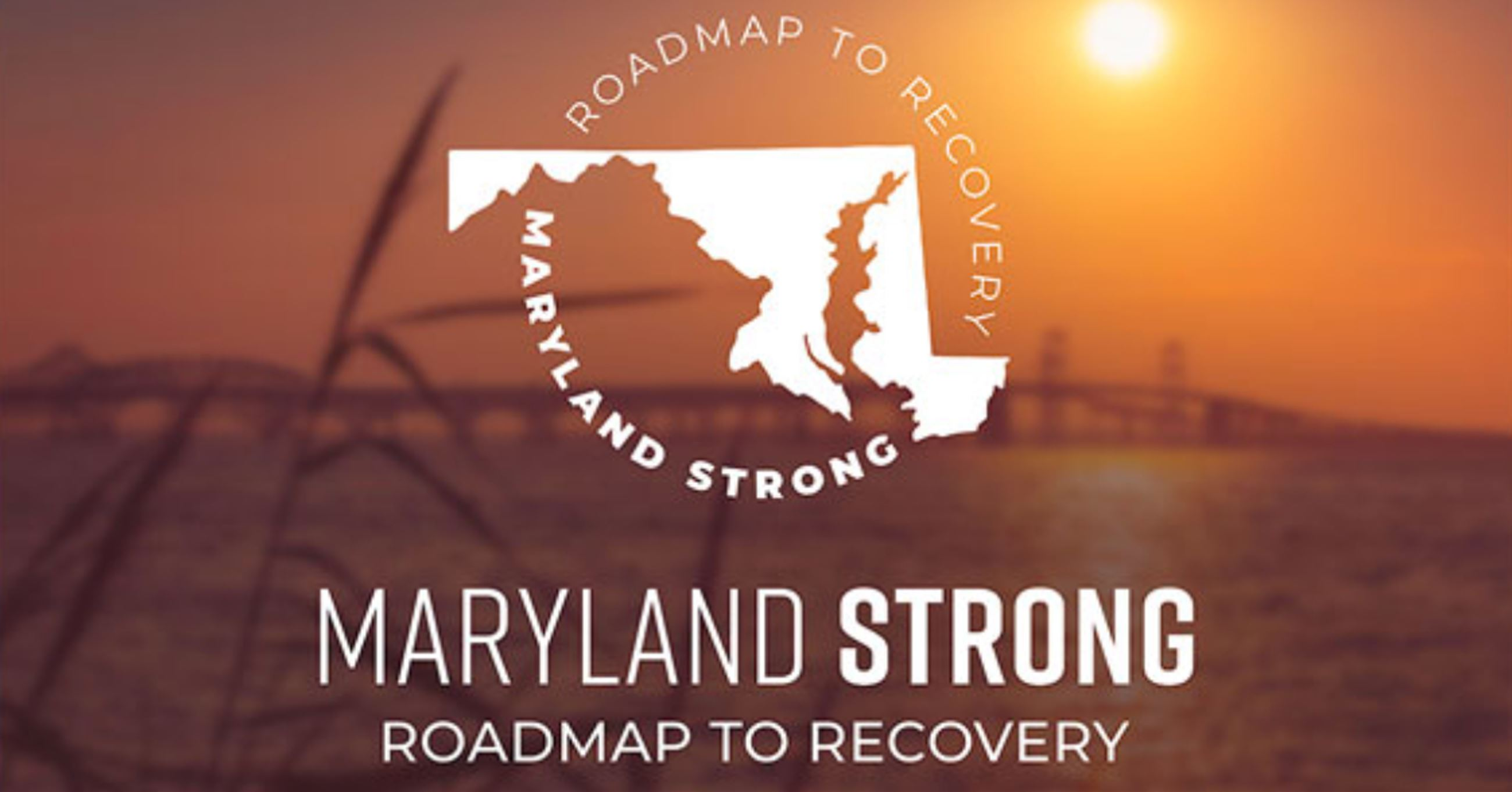 MD roadmap to recovery