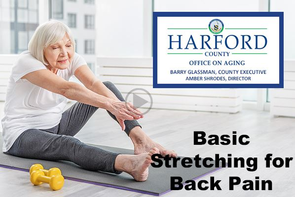Basic Stretching for Back Pain