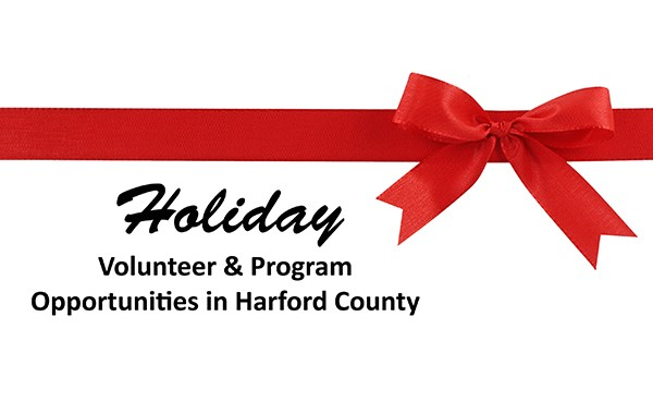2015 Holiday Volunteer Button