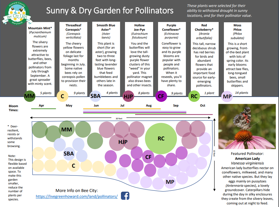 Pollinator garden template Opens in new window